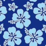 hawaiian_bleu-ciel_bleu