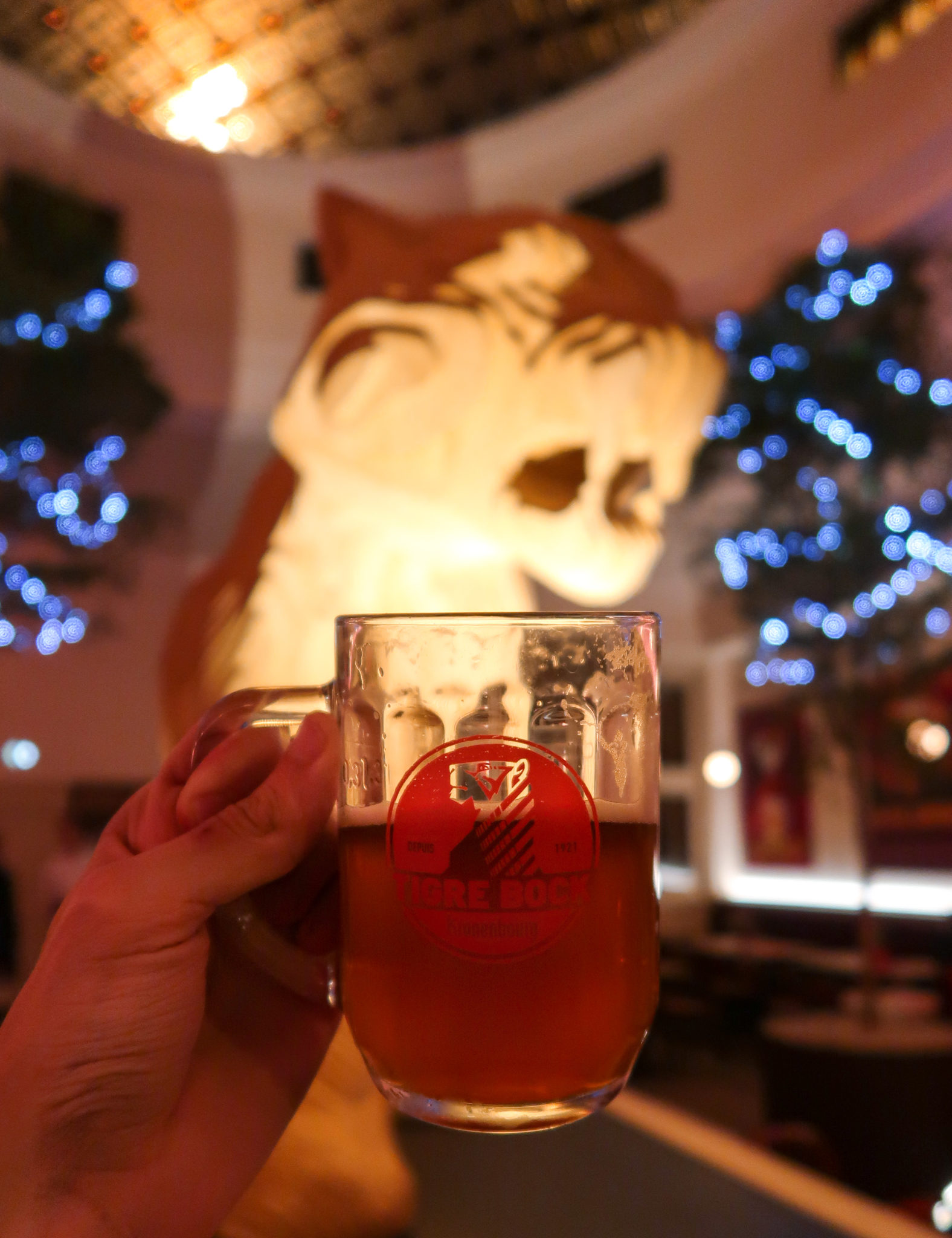 Le Tigre Strasbourg : la nouvelle brasserie incontournable bières Kronenbourg France Tiger Bock